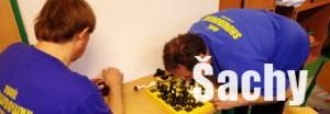 Šachový oddíl odkaz